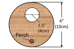 Dimensions for front of bluebird house.