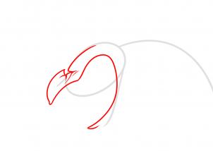 Как нарисовать летучую мышь - мутанта
